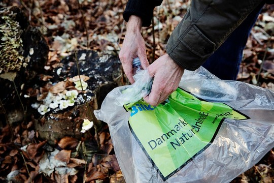 DN affaldsindsamling 2021.jpg