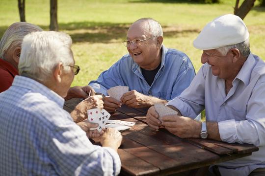 Drømmer du om at bo i et seniorbofællesskab?