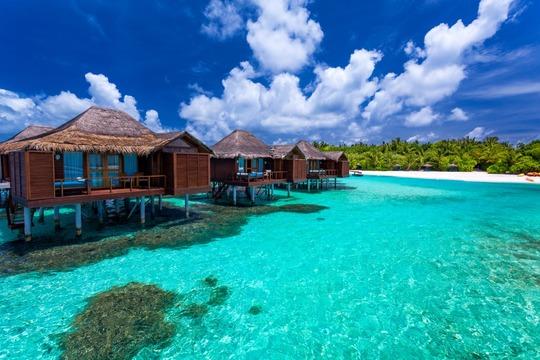 Maldiverne.jpeg